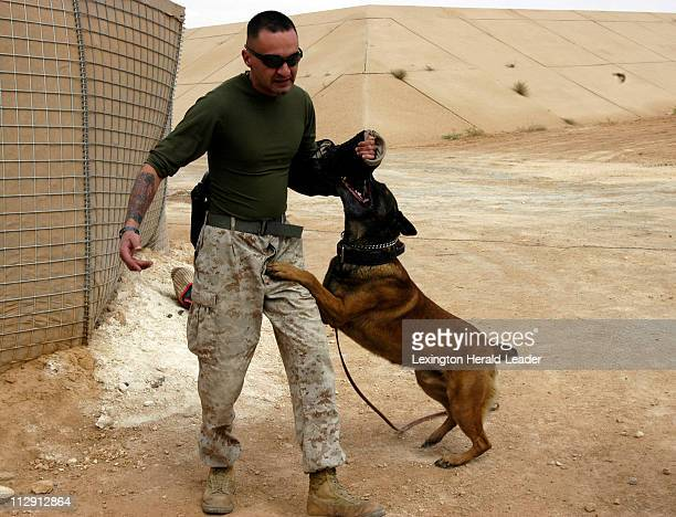 Staff Sgt Joseph Evans of Heavener Oklahoma is part of the Provost Marshals Office Marine Corps Air Ground Combat Center 29 Palms California Here...