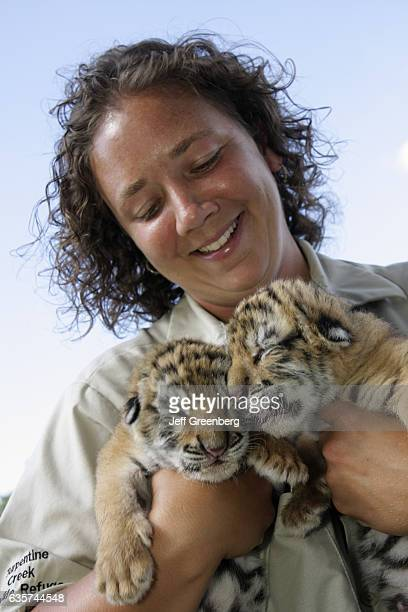 A staff zoologist holding two tiger cubs at the Turpentine Creek Wildlife Refuge