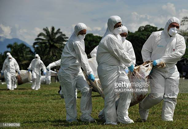 Staffers of the Judicial Police of Colombia unload from an helicopter the corpses of some of the 36 members of the FARC guerrillas killed on the eve...