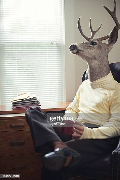 stag man in his office - animal body part stock pictures, royalty-free photos & images