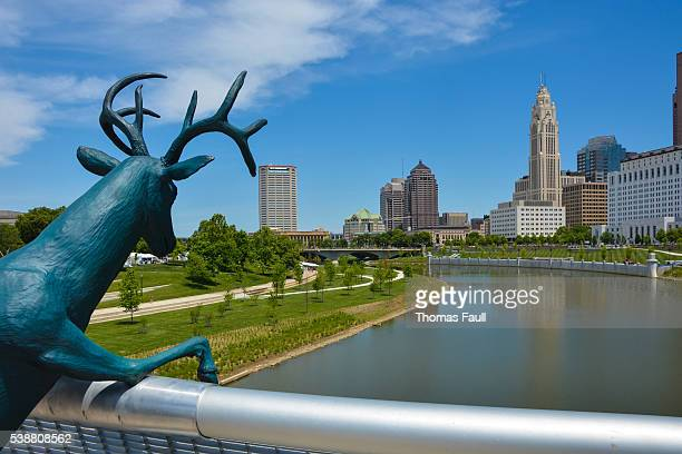 stag statue over river scioto - columbus ohio stock pictures, royalty-free photos & images