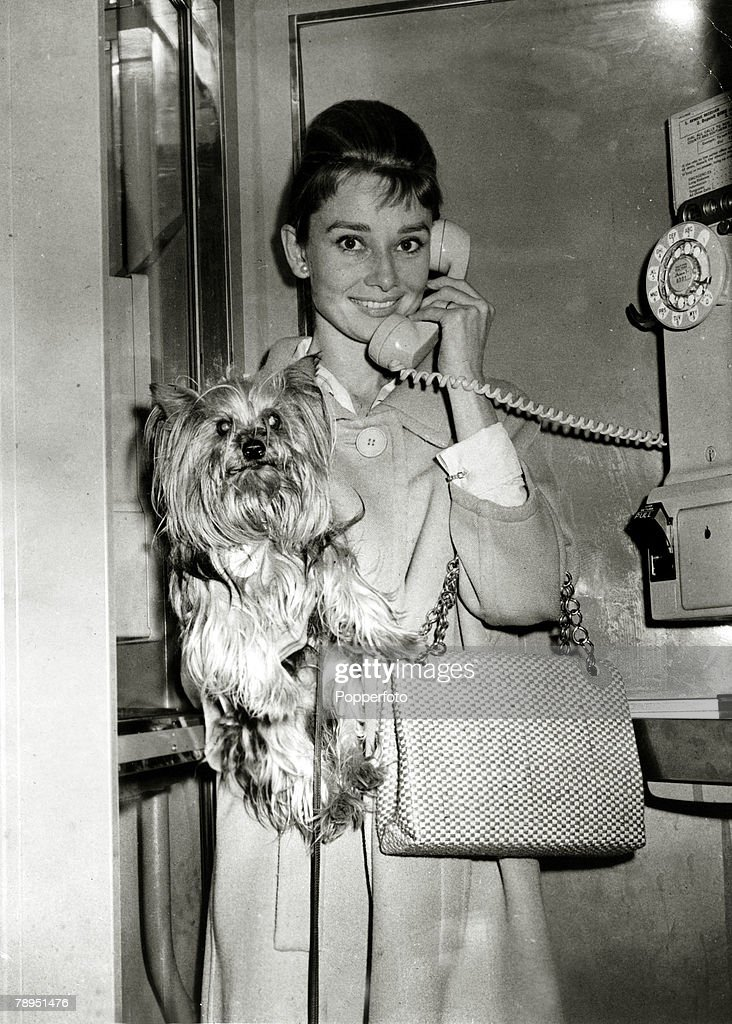 1961, Actress Audrey Hepburn and dog in the film 'Breakfast at Tiffany's', Audrey Hepburn, (1929-1993) born in Brussels, a truly international star from a cosmopolitan background, starred in many films, eg, 'My Fair Lady' and 'Breakfast at Tiffany's'