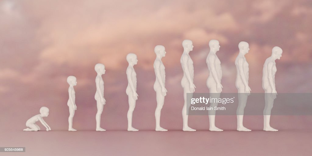 Stages of life from boy to man : Stock Photo