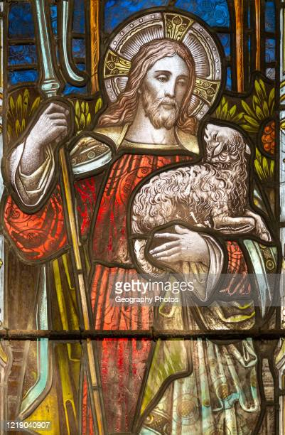 Stained glass window of Jesus Christ the Good Shepherd Christian Malford church Wiltshire England UK c 1884 by A Savell