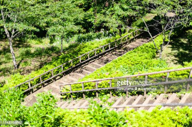 Staircase to park in Japan