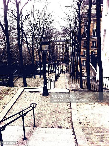 stairs along bare trees against buildings - nadal stock pictures, royalty-free photos & images