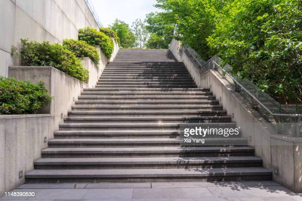 stairs in a park - stufen stock-fotos und bilder