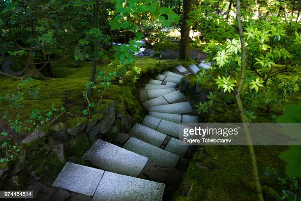 stairs in japanese gardens, portland, oregon, usa - japanese garden stock photos and pictures