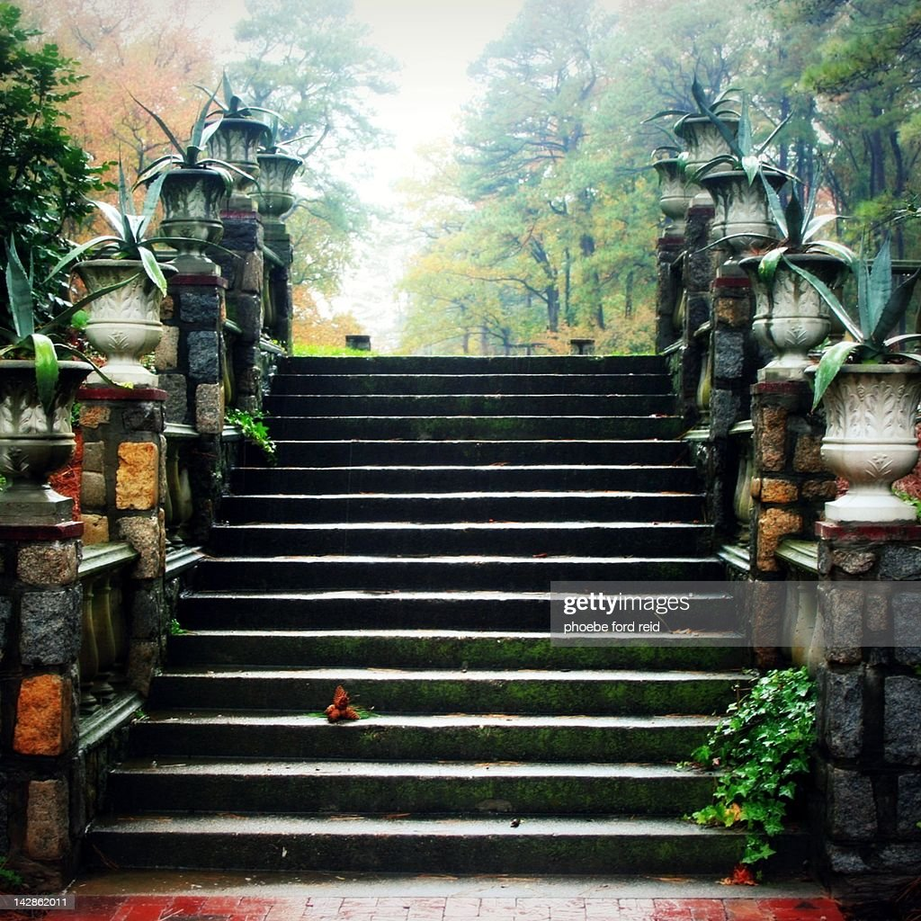 Stairs in mist : ストックフォト