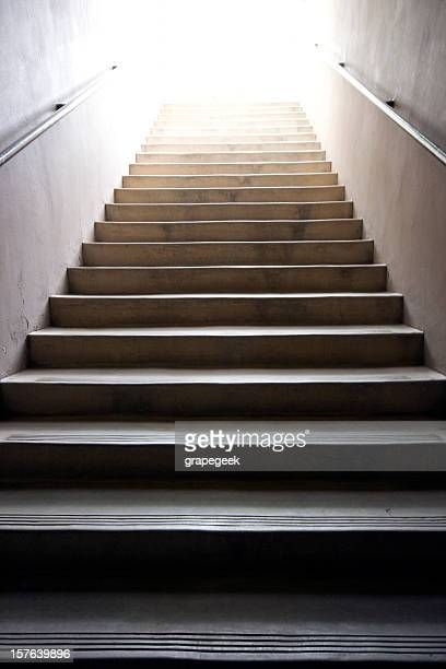 A stairway lit by natural sunlight