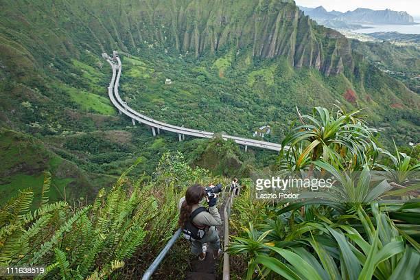 stairway to heaven - oahu, hawaii - オアフ島 ストックフォトと画像