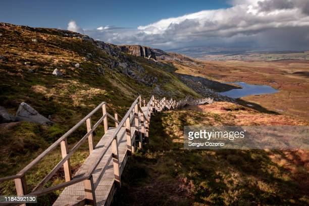 stairway to heaven - northern ireland stock pictures, royalty-free photos & images