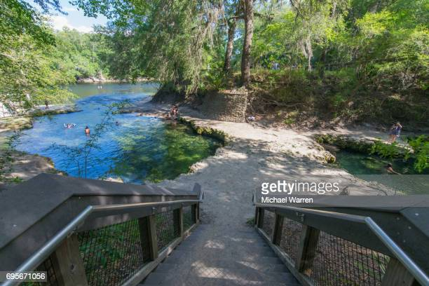 stairway to lafayette blue springs state park - florida sinkhole stock photos and pictures