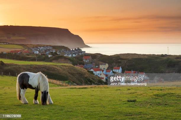 staithes fishing village and distant boulby cliffs on the north yorkshire heritage coastline, staithes, yorkshire, england, united kingdom, europe - north yorkshire stock pictures, royalty-free photos & images