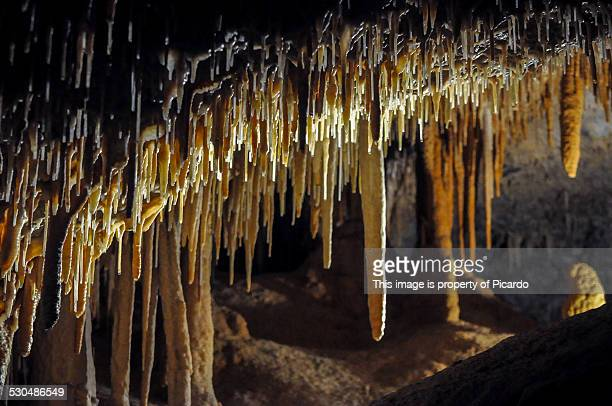 Stalagtites at Lucas Cave, Jenolan Caves