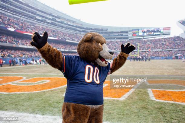 Staley Da Bear of the Chicago Bears fires up the crowd prior to playing against the Green Bay Packers at Soldier Field on December 13 2009 in Chicago...