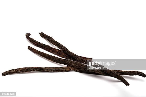 stalks of vanilla - jean marc payet imagens e fotografias de stock