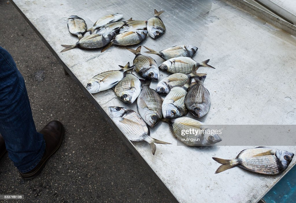 stall of Syracuse fish market,Sicily,Italy : Foto stock