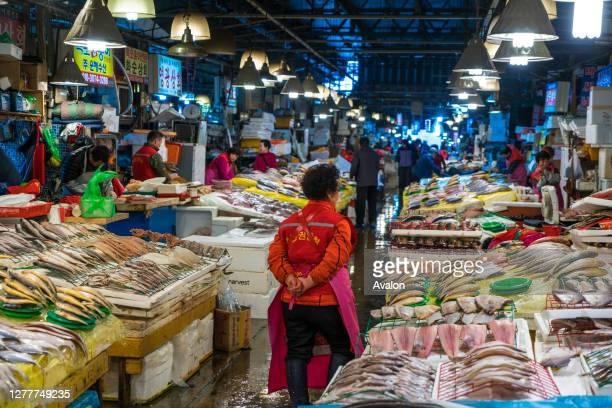 Stalls selling fish at Noryangjin Fish Market Seoul South Korea