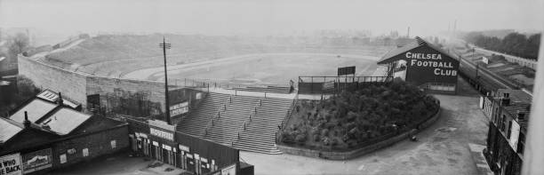 Stamford Bridge View