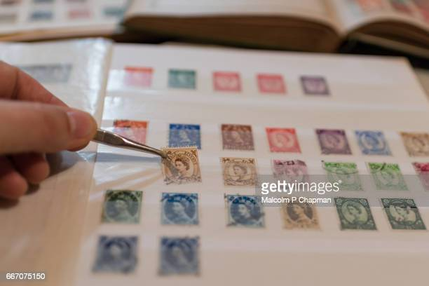 Stamp collection, philately. Man places a postage stamp in an album.
