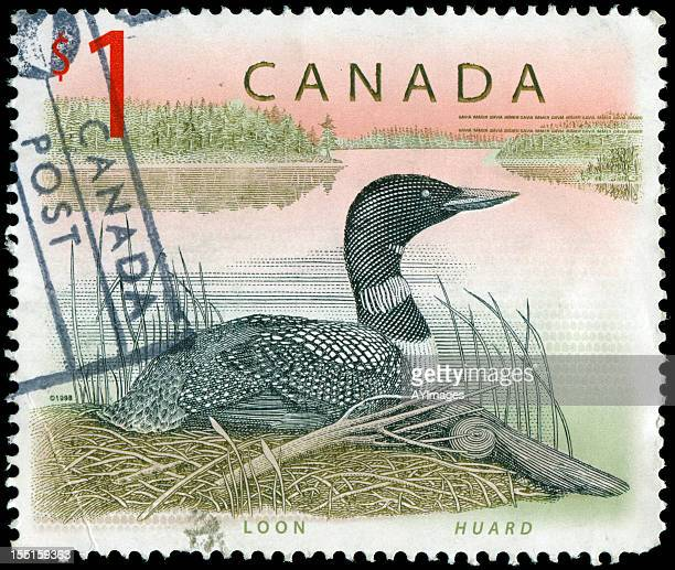Stamp from Canada with bird motif