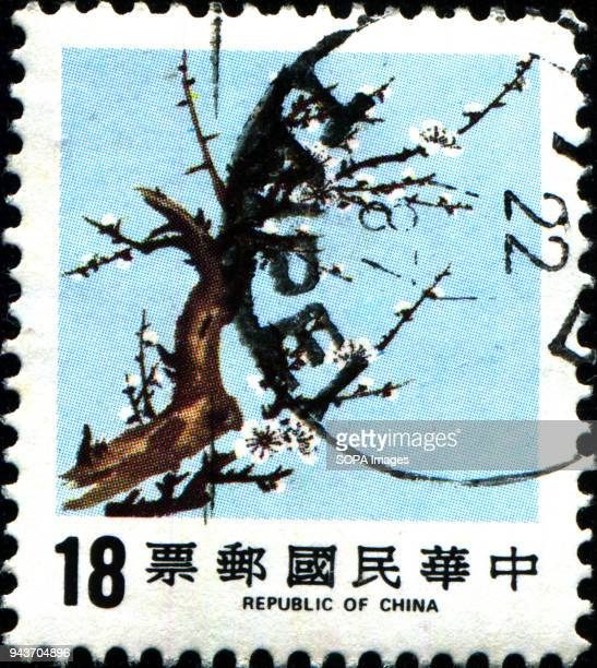 CIRCA 1986 A stamp printed in Taiwan shows Plum Blossom