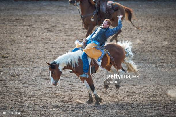 stampede rodeo in america - cowboy's body language while riding wild horse - stampeding stock pictures, royalty-free photos & images