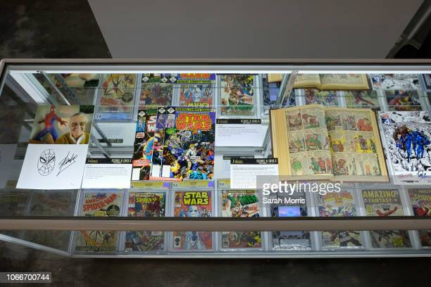 Stan Lee memorabilia seen on display at Icons Idols Hollywood Street Contemporary Art Auction preview with Julien's Auctions at The Standard Oil...