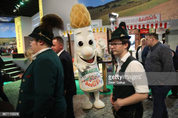 A stand host dressed as a Beelitz asparagus greets visitors in the Brandenburg hall at the 2018 International Green Week agricultural trade fair on...