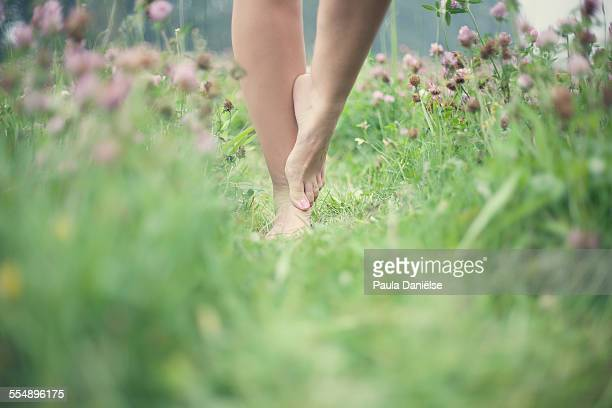 Stand in the Grass