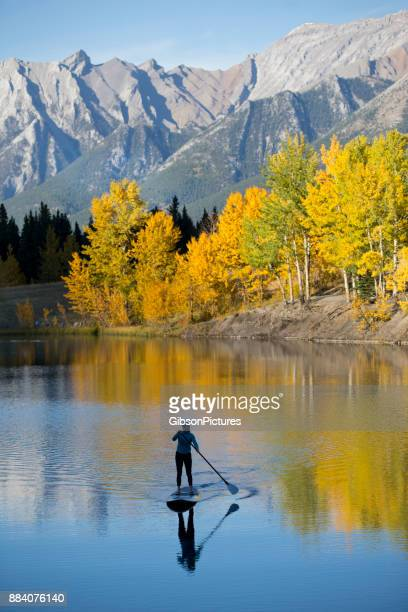 stand up paddleboard adventure - reflection lake stock photos and pictures