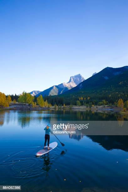 stand up paddleboard girl - canadian rockies stock pictures, royalty-free photos & images