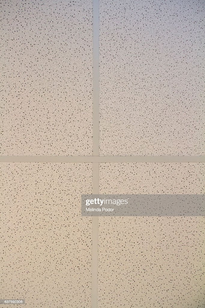 Standard Ceiling Tiles In North American Office Directly From Below