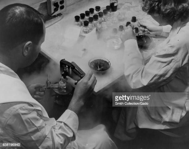 Standard equipment in many pathology laboratories includes a freezing microtome such as this one 1954 Image courtesy US Department of Energy
