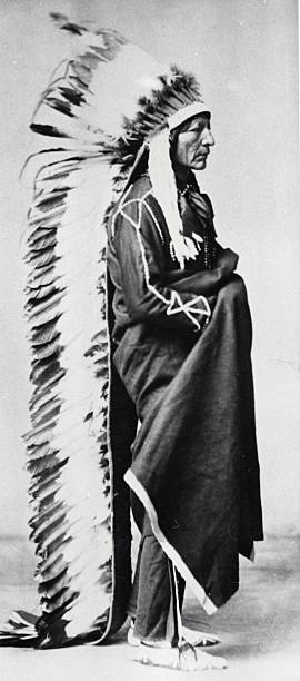 standing bear chief of the sioux wearing ceremonial robes and full