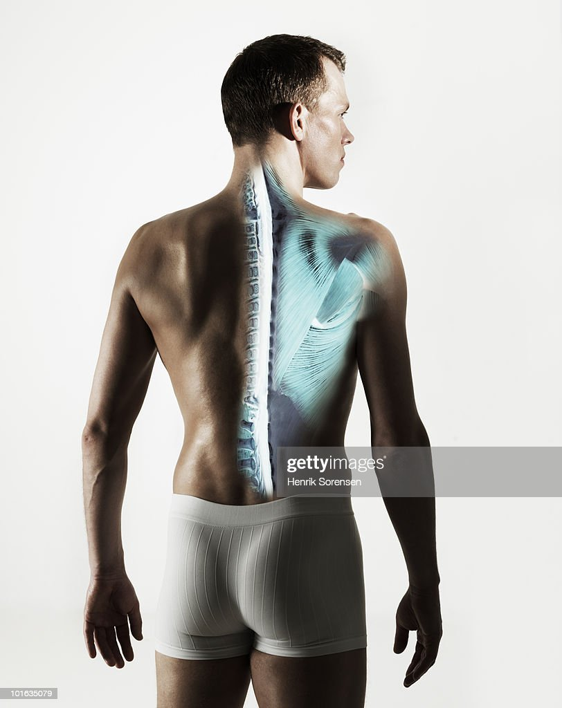 Standing male back with spine visible : Stock Photo