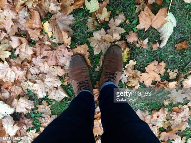 standing on autumn leaves - suede shoe stock pictures, royalty-free photos & images