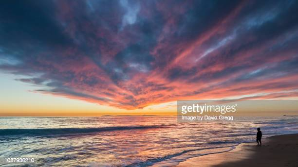 standing on the edge of night - catalina island stock photos and pictures