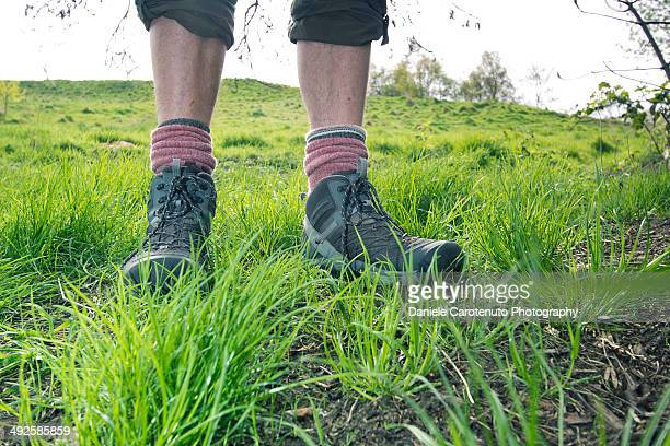Standing over a hill in the grass