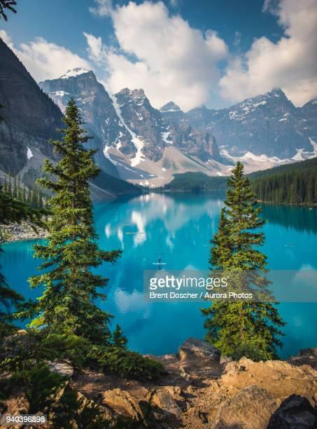 standing up paddle boarder paddling on moraine lake in banff national park, canada - provinz alberta stock-fotos und bilder