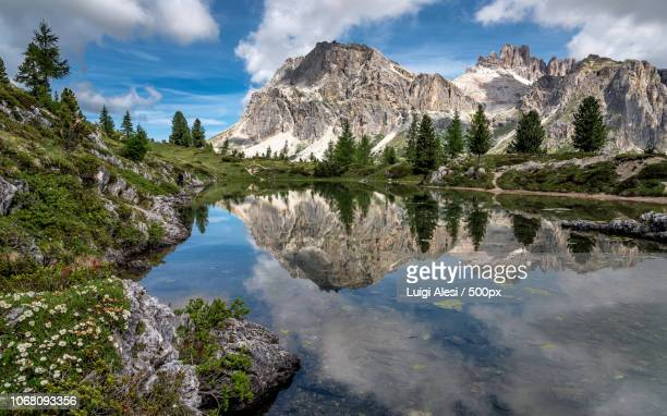 standing water with mountains in background - belluno stock pictures, royalty-free photos & images