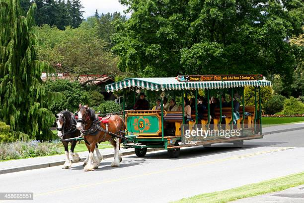 staney park horse drawn carriage - stanley park stock photos and pictures