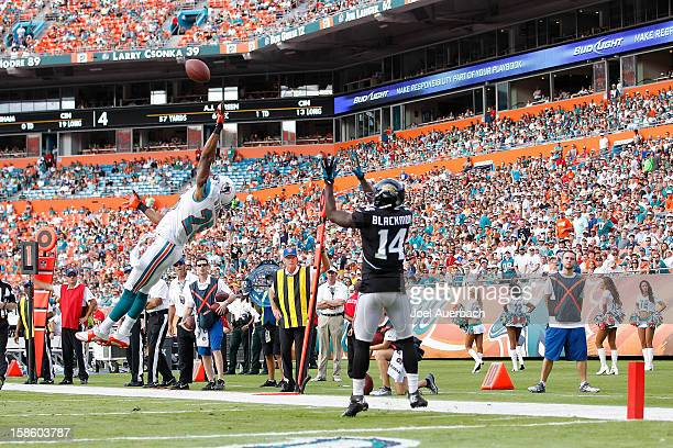 J Stanford of the Miami Dolphins is unable to tip the ball intended for Justin Blackmon of the Jacksonville Jaguars on December 16 2012 at Sun Life...