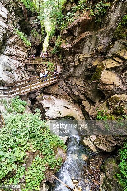 stanghe cascate-racines - pjphoto69 foto e immagini stock