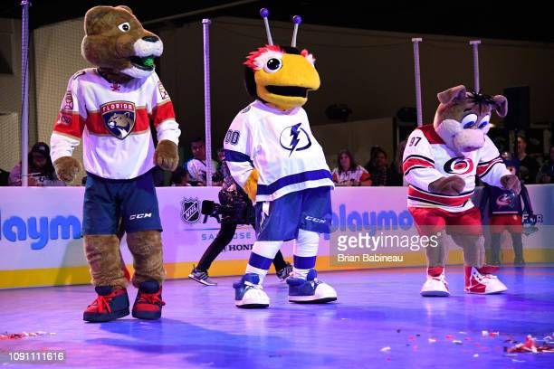 Stanley C Panther of the Florida Panthers ThunderBug of the Tampa Bay Lightning and Stormy of the Carolina Hurricanes at the 2019 NHL AllStar Fan...