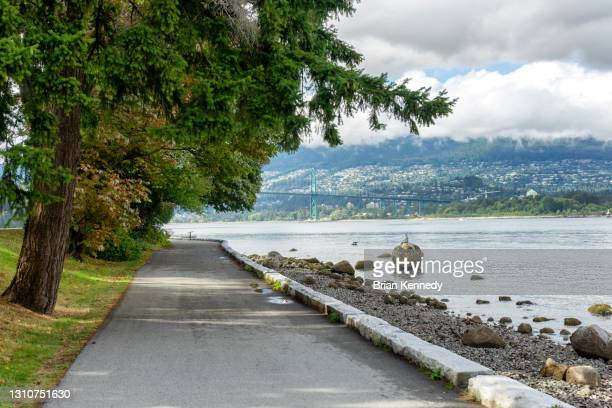 stanley park seawall path - seawall stock pictures, royalty-free photos & images