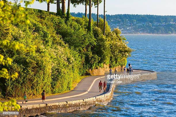 stanley park, vancouver, canada - stanley park stock photos and pictures