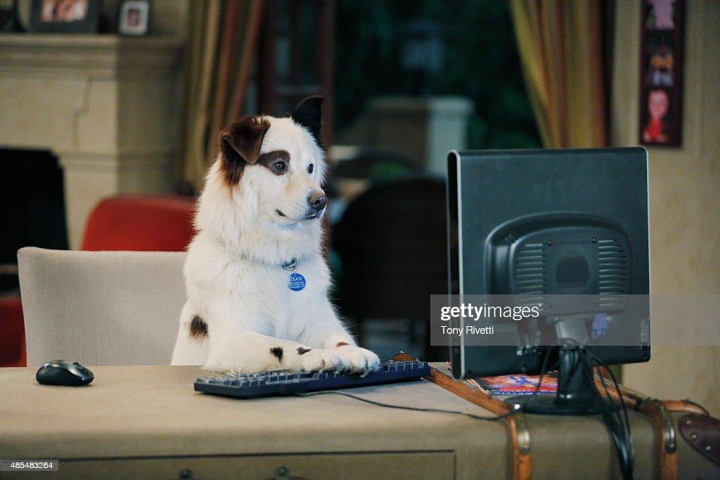 """Disney Channel's """"Dog With A Blog"""" - Season Three : Nachrichtenfoto"""