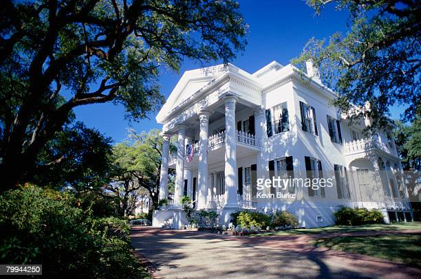 stanton hall plantation house - antebellum stock photos and pictures